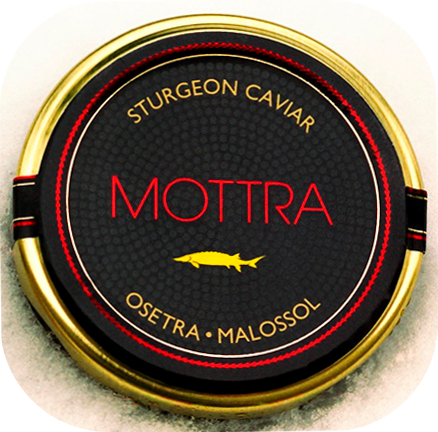 Mottra yellow